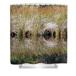 Escape Hatches Shower Curtain by Kay Lovingood