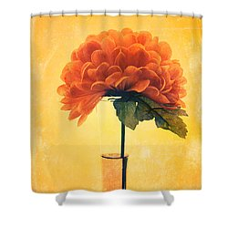 Estillo - 01i2t03 Shower Curtain