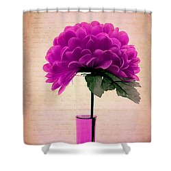 Estillo - 06t11 Shower Curtain by Variance Collections