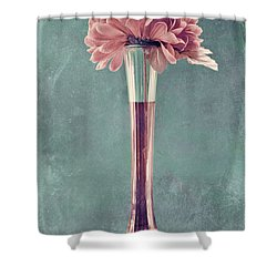 Estillo Vase - S01v4b2t03 Shower Curtain by Variance Collections