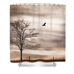 Evening Flight Shower Curtain by Darren Fisher