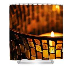 Evening Light Shower Curtain by Julia Wilcox