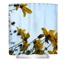 Every Sight And Every Sound Shower Curtain by Laurie Search