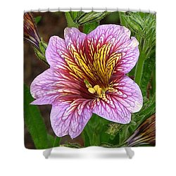 Exploding Beauty Shower Curtain by Wendy McKennon