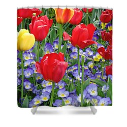 Exultation Shower Curtain by Rory Sagner