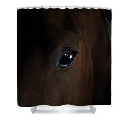 Eye Of The Beholder Shower Curtain by Davandra Cribbie