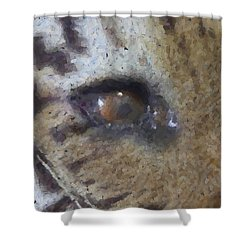 Shower Curtain featuring the photograph Eye Of The Tiger by Donna G Smith