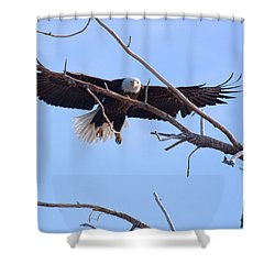 Shower Curtain featuring the photograph Eyes On The Prize by Jim Garrison