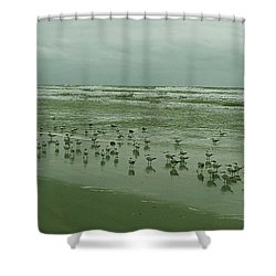 Shower Curtain featuring the photograph Facing The Wind by Donna Brown