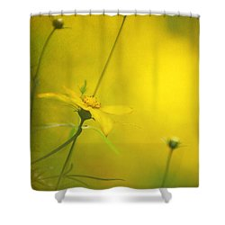 Faded Dreams Shower Curtain by Darren Fisher