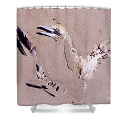 Fading Away Shower Curtain by John Malone
