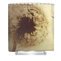 Fading Wish Shower Curtain by Amy Tyler
