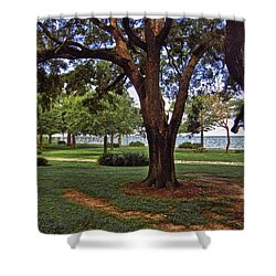 Fairhope Lower Park 2 Trees Shower Curtain by Michael Thomas