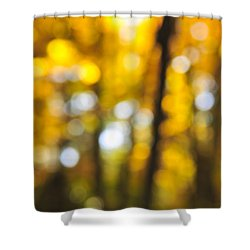 Fall Abstract Shower Curtain by Elena Elisseeva