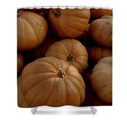 Fall Bounty Shower Curtain by LeeAnn McLaneGoetz McLaneGoetzStudioLLCcom