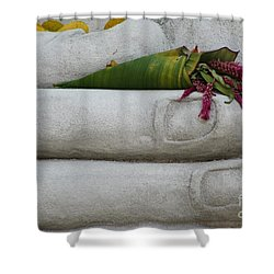 Fall Buddha #2 Shower Curtain by Nola Lee Kelsey