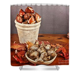 Fall Bulbs 1 Shower Curtain by Verena Matthew