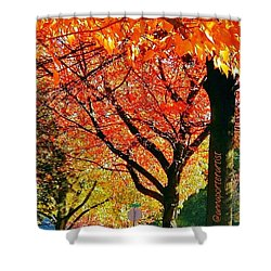 Fall Color Nw Lovejoy And 22nd Street Shower Curtain