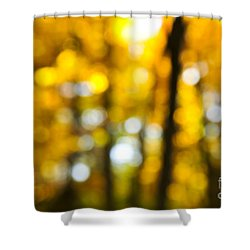 Fall Forest In Sunshine Shower Curtain