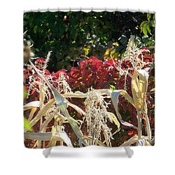 Fall Harvest Of Color Shower Curtain by Dorrene BrownButterfield
