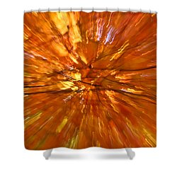 Fall Inside Out Shower Curtain by Rachel Cohen