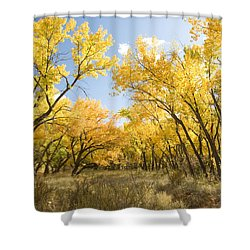 Fall Leaves In New Mexico Shower Curtain