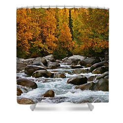Fall On The Little Susitna River Shower Curtain
