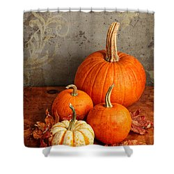 Fall Pumpkin And Decorative Squash Shower Curtain by Verena Matthew