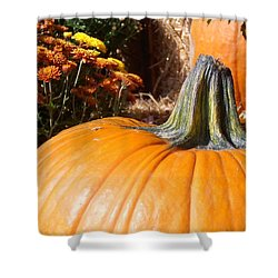 Fall Pumpkin Shower Curtain by Kimberly Perry