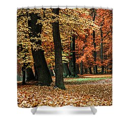 Fall Scenery Shower Curtain by Hannes Cmarits