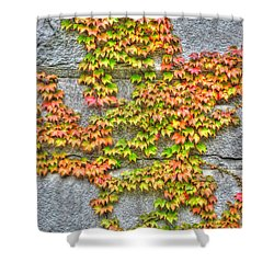 Shower Curtain featuring the photograph Fall Wall by Michael Frank Jr