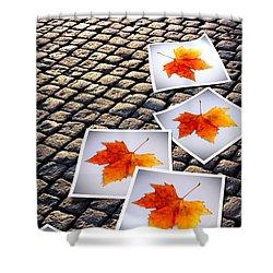 Fallen Autumn  Prints Shower Curtain by Carlos Caetano