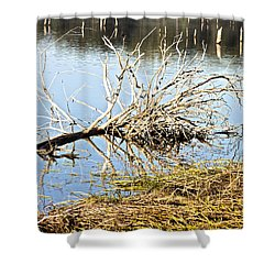 Fallen Tree Shower Curtain by Douglas Barnard