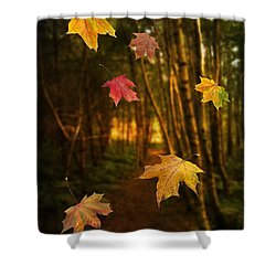 Falling Leaves Shower Curtain by Amanda Elwell