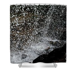 Fall's Backside Shower Curtain by Susan Herber