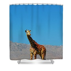 Far From Home Shower Curtain