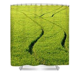 Farm Tracks Shower Curtain by Mike  Dawson