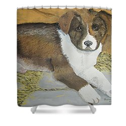 Shower Curtain featuring the painting Fat Puppy by Norm Starks