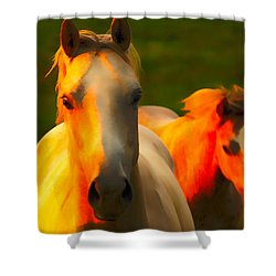 Father And Son Shower Curtain by Randall Branham