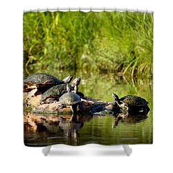 Favorite Spot Shower Curtain