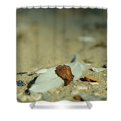 Feather And Leaf Shower Curtain
