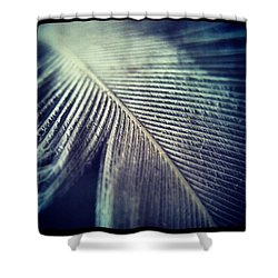 Feather Macro Shower Curtain