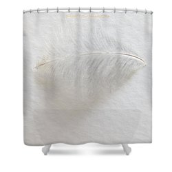 Feather Touch Shower Curtain by Sonali Gangane