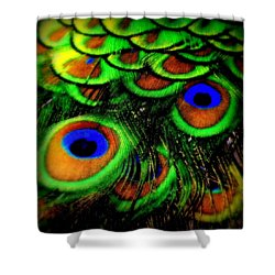 Feathers Shower Curtain by Karen Wiles