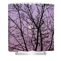 Shower Curtain featuring the photograph February's Full Moon by Rachel Cohen