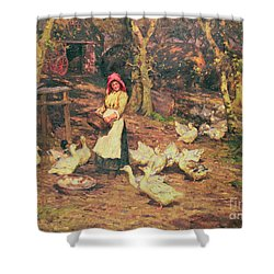 Feeding The Ducks Shower Curtain by Joseph Harold Swanwick