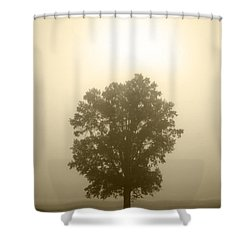 Feeling Small 2 Shower Curtain by Amanda Barcon