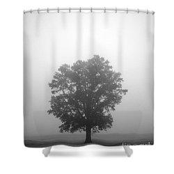 Feeling Small Shower Curtain by Amanda Barcon