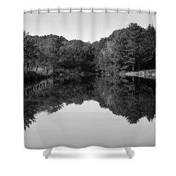 Fenns Pond Shower Curtain by Karol Livote