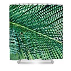 Ferns 56 Shower Curtain